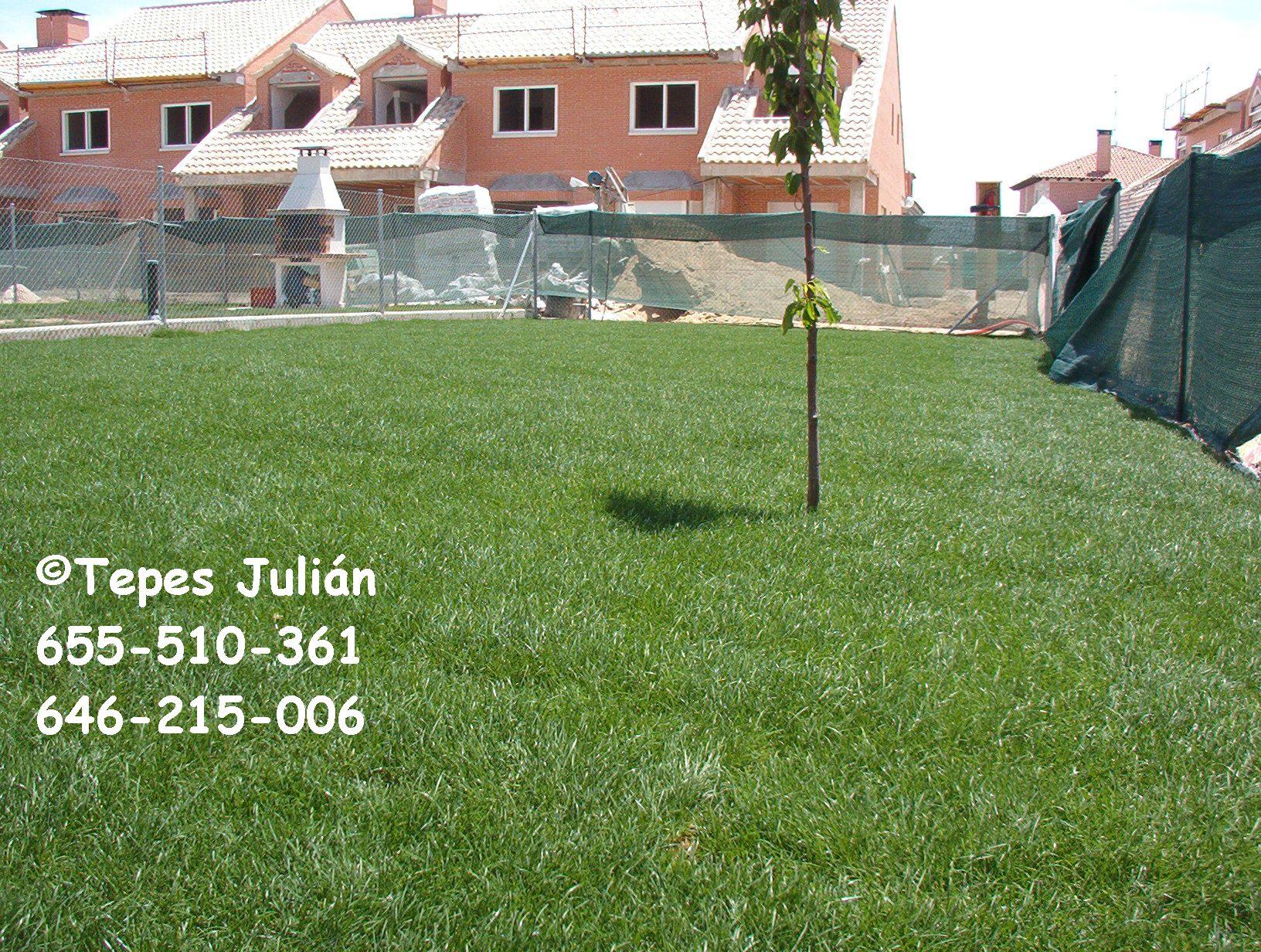 El jardin perfecto guia para plantar cesped paso a paso - Como plantar cesped en el jardin ...