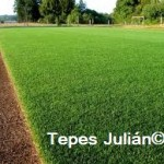 cesped natural Tepes Julian