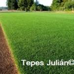 cesped natural Tepes Julian