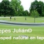 como hacer un jardin Tepes Julián