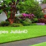 el cesped Tepes Julian