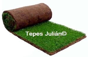 Jardineros en madrid tepes juli n for Tepes de cesped baratos