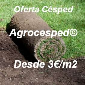 Oferta césped natural Agrocesped
