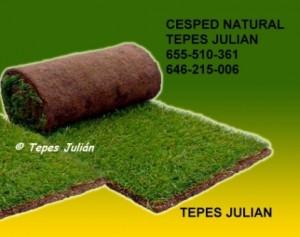 Tratamiento con herbicidas